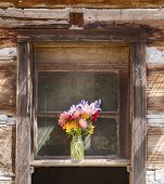 stock photo of log cabin  - A still life of a flower vase is centered in a window on an old pioneer log cabin on Waldron Island in Washington - JPG