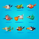 foto of angry bird  - Funny cartoon birds icons - JPG