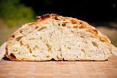 Bread Detail