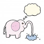 stock photo of squirting  - cartoon elephant squirting water with thought bubble - JPG