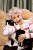 foto of elderly woman  - The grandmother with a cat on a sofa - JPG