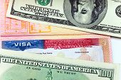Постер, плакат: Американская виза на странице международного паспорта и доллары США