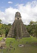 Jaguar Pyramide