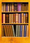Una colección de libros en una librería en formato vectorial.