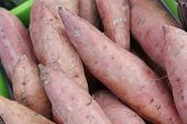 foto of solanum tuberosum  - Sweet potato - JPG