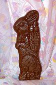 Choc Bunny2