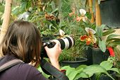 Photographer In Tropic Garden