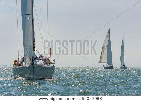 Three beautiful white yachts sailboats