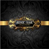 pic of aristocrat  - Vintage gold frame on black floral background - JPG