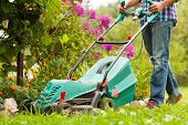Young Male Gardener Mow Grass With Lawn Mower In Garden In Summer. Working In Garden. poster