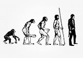 picture of darwin  - Evolution - JPG