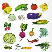 Set of Hand Drawn Fresh Vegetables