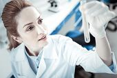 Scientific Research. Professional Joyful Female Scientist Holding A Test Tube And Looking At It Whil poster