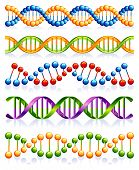 stock photo of plexus  - DNA strands - JPG