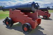 Two Black Field Cannon