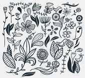 A hand drawn flower set. Vector illustration.