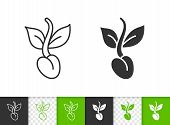 Seeds Black Linear And Silhouette Icons. Thin Line Sign Of Sprout. Organic Plant Outline Pictogram I poster