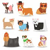 Dog Vector Puppy Pet Animal Doggie Character In Canine Clothing Of Domestic Dog-breeding Illustratio poster