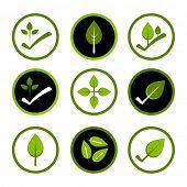 Green environmentally friendly logos.