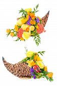 Thanksgiving flower arrangement in cornucopia basket isolated on white