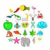 Maintain The Wildlife Icons Set. Cartoon Set Of 25 Maintain The Wildlife Vector Icons For Web Isolat poster