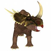 Brown Rubeosaurus Dinosaur On White 3d Illustration - Rubeosaurus Was A Herbivorous Ceratopsian Dino poster