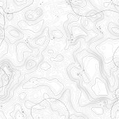 Seamless Pattern. Topographic Map Background With Space For Copy Seamless Texture. Geographic Grid A poster