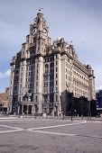 Liver Buildings poster