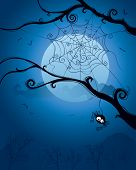 Spider hanging on tree on Halloween night.  Blank space below for design and text.