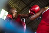pic of pugilistic  - Sport and people two men exercising and fighting in boxing gym - JPG