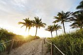 Path to Miami Beach