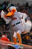 CENTRAL ISLIP-JULY 21: Long Island Ducks mascot QuackerJack entertains the crowd at the game against