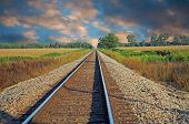 stock photo of train track  - Train tracks running into the distance next to a field - JPG