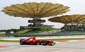 Formula One Driver Fernando Alonso