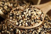 foto of millet  - Organic Dry Multi Grain Rice against a background - JPG