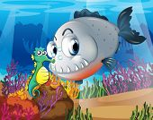 picture of piranha  - Illustration of a piranha and a seahorse under the sea - JPG