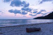 Wood On Beautiful Beach Coastline  During Sunset