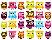stock photo of eye-wink  - Vector Collection of Cute and Colorful Owls - JPG