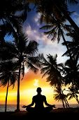 picture of siluet  - Yoga meditation silhouette by man at palms ocean and sunset sky background in India - JPG