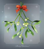 Christmas vintage card with mistletoe. Vector eps10.