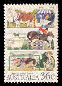 AUSTRALIA - CIRCA 1987: A stamp printed in Australia shows the Livestock, Agricultural Shows series,