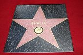LOS ANGELES - DEC 5:  Thalia Star on the WOF at the Thalia Hollywood Walk of Fame Star Ceremony at W