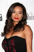 LOS ANGELES - DEC 5:  Rochelle Aytes at the 2nd Annual Saving Innocence Gala at The Crossing on December 5, 2013 in Los Angeles, CA
