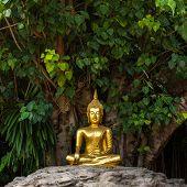 Golden Buddha statue in Wat Phan Tao temple in Chiang Mai, Thailand