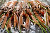 image of norway lobster  - Marine Product Presentation And Preparation Of The Crayfish - JPG