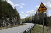 Elk Sign At The Road In Finland