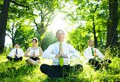 stock photo of environmental conservation  - Business people meditating outdoors - JPG