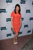 LOS ANGELES - MAY 1:  Gail Simmons at the A Night With