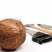 stock photo of coir  - Coconut with a tooling for opening on white - JPG
