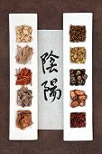 Chinese herbal medicine with yin and yang calligraphy script on rice paper. Translation reads as yin